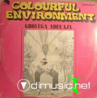 Gboyega Adelaja - Colourful Environment (LP)