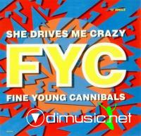 Fine Young Cannibals - She Drives Me Crazy (16 Versiones)???