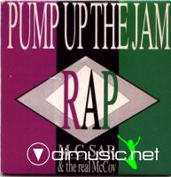 M.C. Sar & The Real McCoy - Pump Up The Jam - Rap (CD, Maxi)