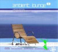 VA - Ambient Lounge Vol. 8 (2005)