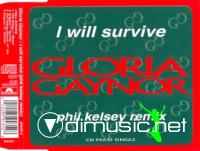 Gloria Gaynor - I Will Survive (Phil Kelsey Remix)