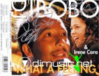 DJ Bobo feat. Irene Cara - What I Feeling