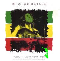 Big Mountain - Baby I Love Your Way (Spanish Version)