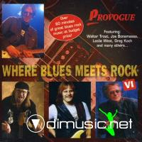 WHERE BLUES MEETS ROCK 6