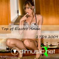 Top of electro house(27.08.2009)