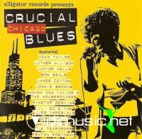 Alligator Records - Crucial Blues - Chicago