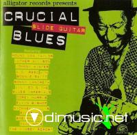 Alligator Records - Crucial Blues - Slide Guitar