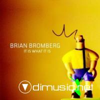 Brian Bromberg - It Is What It Is (2009)
