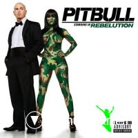 Pitbull-Rebelution-2009
