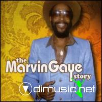 Marvin Gaye - The Marvin Gaye Story