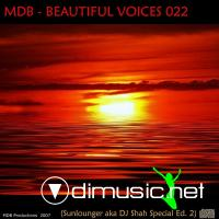 Beautiful Voices 22