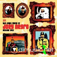 VA - The Many Faces Of Joey Negro Vol. 2 (2009)