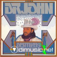 DR. JOHN - Desitively Bonnaroo 1974