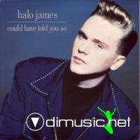 Halo James - Could Have Told You So - Single 12'' - 1989