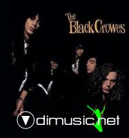 Black Crowes - Shake Your Money Maker - 1990