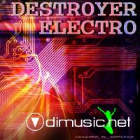 Destroyer Electro (2010)