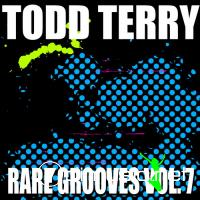 Todd Terry's Rare Grooves Volume 7