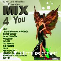 Cover Album of Mix4You The Ultimate Dany Mix MegaMix 2010