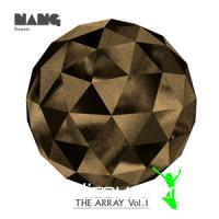 Various - Nang Presents- The Array Volume 1