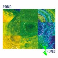 Pond - Frond (2010)