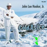 John Lee Hooker Jr. - Cold As Ice (2006)