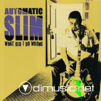 Automatic Slim - What Did I Do Wrong (2007)