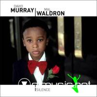 David Murray, Mal Waldron - Silence (2008)