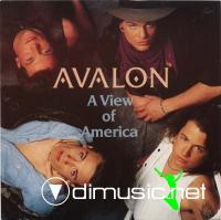 Avalon - A View Of America (Vinyl, 7'') 1989