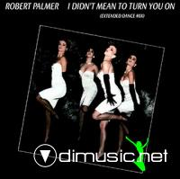 Robert Palmer -  I Didn't Mean To Turn You On - 12