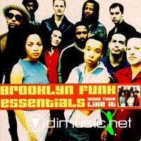 Broolkyn Funk Essentials - Make Them Like It CD - 2000