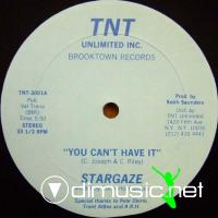 Stargaze - You Can't Have It - 12 Inches - 1982