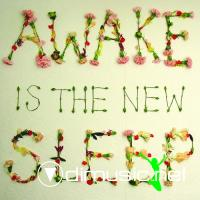 Ben Lee - Awake Is the New Sleep [iTunes] (2005)