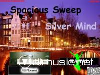 Spacious Sweep - Silver Mind (Single 2011)