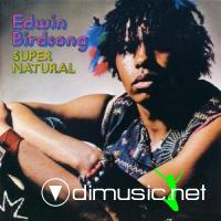 Edwin Birdsong - Super Natural LP - 1973