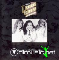 Dixie Chick - Shouldn't A Told You That CD - 1993