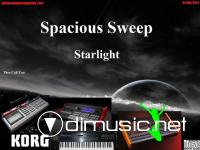 Spacious Sweep - Starlight (Maxi-Single  2011)