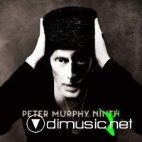 Peter Murphy - Ninth CD - 2011