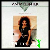 Anita Pointer - Love For What It Is LP - 1987