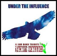 VA - Under The Influence: Tribute To Lynyrd Skynyrd CD - 2004
