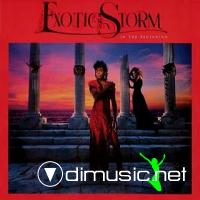 Exotic Storm - In The Beginning LP - 1986