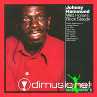 Johnny Hammond - Wild Horses Rock Steady (Vinyl, LP) (1972)
