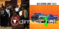 Various Artists – Old School Jam – Gold (2007)