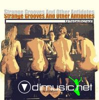 VA - Strange Grooves And Other Antidotes For The Heart Beating CD - 2010