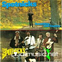 The Spotnicks - Back In The Race & Something Like Country (2002)
