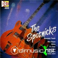 The Spotnicks - Romantic Touch (1987)