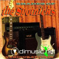 VA - Shades Of The Spotnicks (2000)