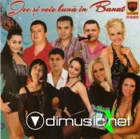 Joc si voie buna in Banat 2011 (CD ORIGINAL)