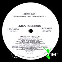 Adam Ant - Room At The Top (US 12'' Promo)