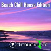 VA - Beach Chill House Edition (2012)