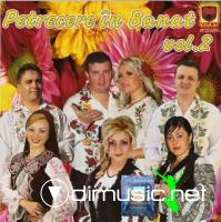 Petrecere in Banat vol.2 2012 (CD ORIGINAL)